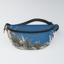 Ancient Bristlecone Pine Forest in California Fanny Pack