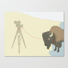 Bison & Camera Canvas Print