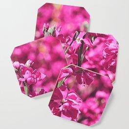 Hot Pink Coaster
