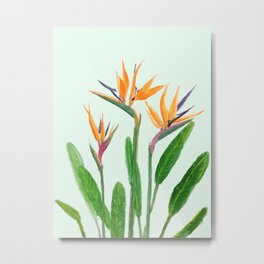 bird of paradise flower painting Metal Print