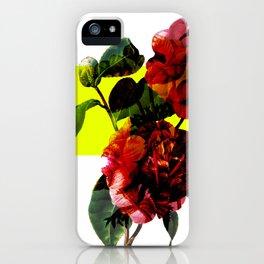 Vintage Blooms /Neon Block iPhone Case