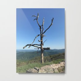 The Beauty of a Dead Tree Metal Print