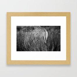 Giraffe standing in tall African grass Framed Art Print