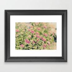 Pink flowers Framed Art Print