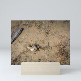 Dead Fish Mini Art Print