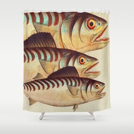 Fish Classic Designs 8 Shower Curtain