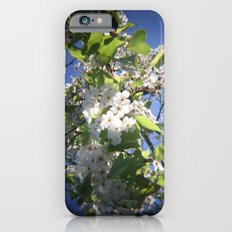 blossoms on vermont iPhone 6s Slim Case