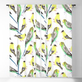 Budgies and american goldfinches Blackout Curtain