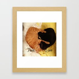 Kitty Love Framed Art Print