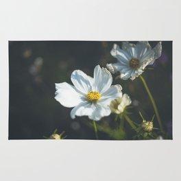 Anemone flowers Rug