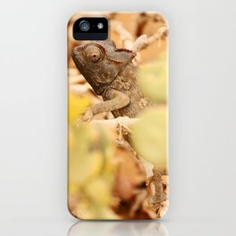 NAMIBIA ... the  chameleon iPhone Case