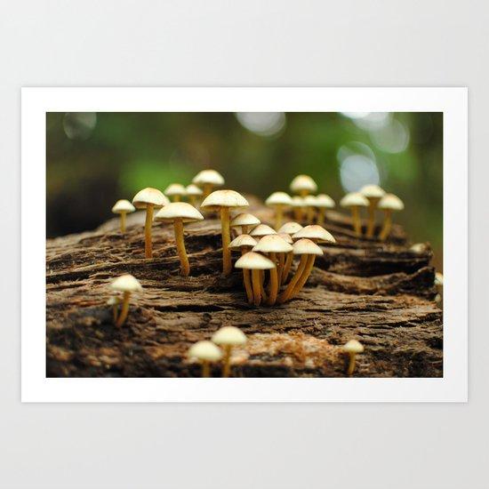 Mini mushrooms Art Print