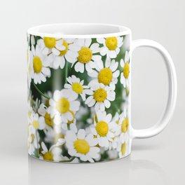 Camomile Wild Flowers Coffee Mug
