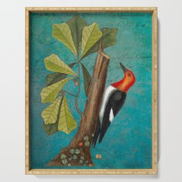 Red Headed Woodpecker with Oak, Natural History and Botanical collage Serving Tray