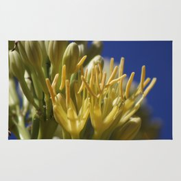Closeup of Blossoming Parry's Century Plant Rug