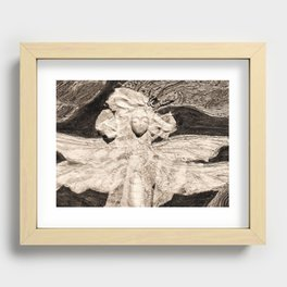 Dragonfly in Sepia Recessed Framed Print