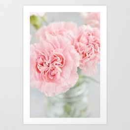 Pale Pink Carnations 3 Art Print