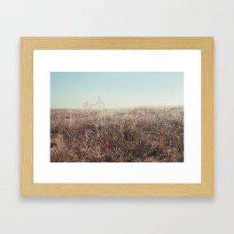 Frost Framed Art Print