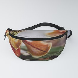 The Pitcher Fanny Pack
