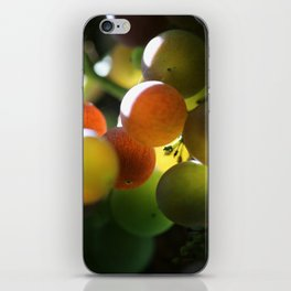 Grapes 2 iPhone Skin