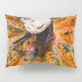 Green and Orange Pumpkin Close-Up Pillow Sham