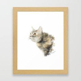 A cat in hunting mode Framed Art Print