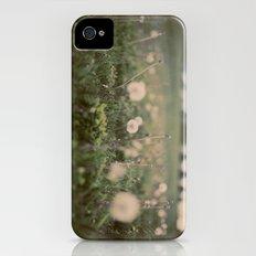 Forgotten Wishes iPhone (4, 4s) Slim Case