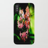 cacti iPhone & iPod Cases featuring Cacti by Chris' Landscape Images & Designs