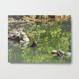 Turtle Bay Metal Print