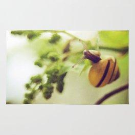 little snail Rug
