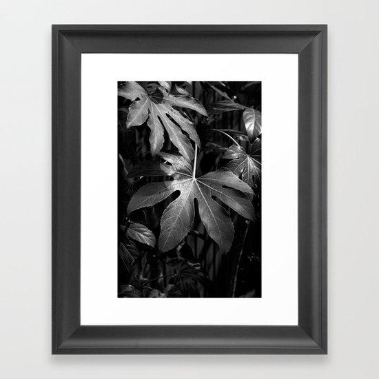 Leaves, Hida-Takayama, Japan Framed Art Print