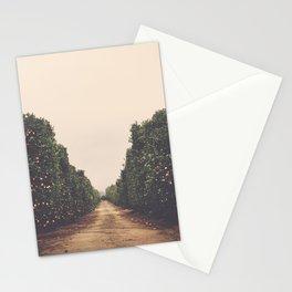 Vanish Stationery Cards