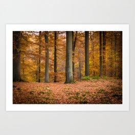 I love autumn ! Art Print