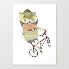 Biking, bike, bikes, biker, bear,  Canvas Print