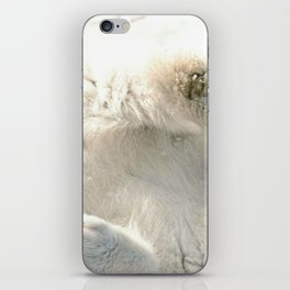 Super Cute Adolescent Polar Ice Bear Playing In Snow Close Up Ultra High Definition iPhone Skin