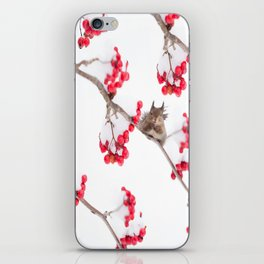 Cute Squirrel With Red Rowan Berries On A White Background #decor #society6 #buyart iPhone Skin