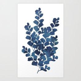 Blue watercolor maidenhair fern Art Print