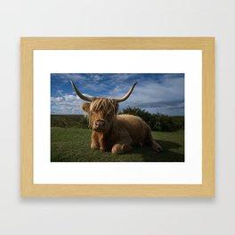 Rugged Highland Cow Framed Art Print