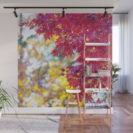 Maple in the Fall Wall Mural
