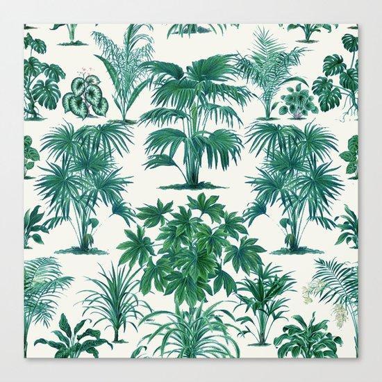 Exotic Tropical Palm Print Canvas Print