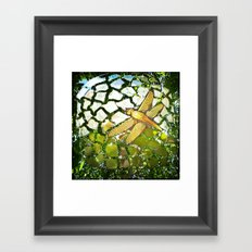 Fly High Dragonfly. Framed Art Print