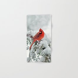 Cardinal on a Snowy Branch Hand & Bath Towel