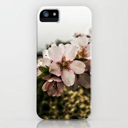 Flor de Almendro iPhone Case