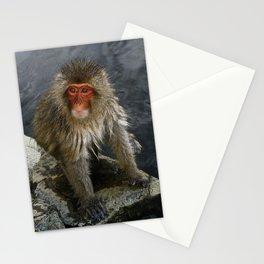 macaque monkey at jigokudani monkey park, nagano, japan Stationery Cards