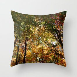 Through the Trees in October Throw Pillow