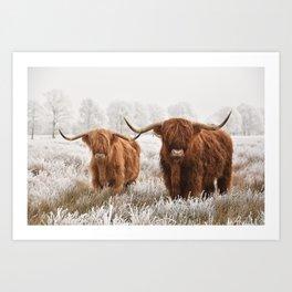 Hairy Scottish highlanders in a natural winter landscape. Art Print
