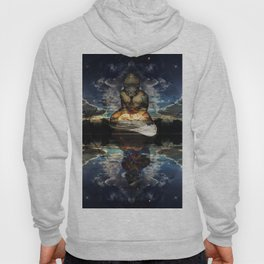 The Mirrored Surface Hoody