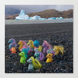 My Little Sea Ponies in Patagonia Canvas Print