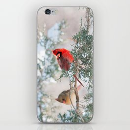 Remembering.... (Northern Cardinals) iPhone Skin