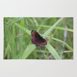 Arran Brown butterfly Rug
